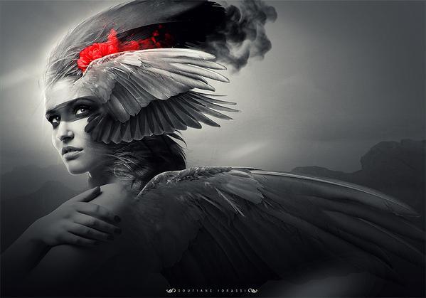 Winged Angel 4 sur le réseau