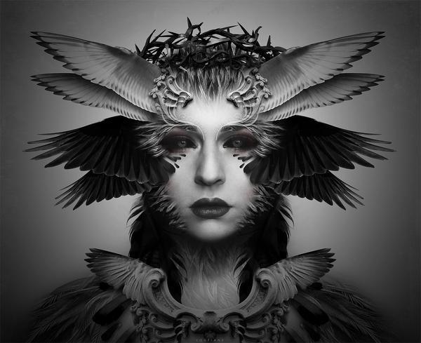 Winged Angel sur le réseau