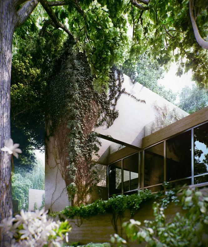 overgrown-house-hungary-05.jpeg (665×790)