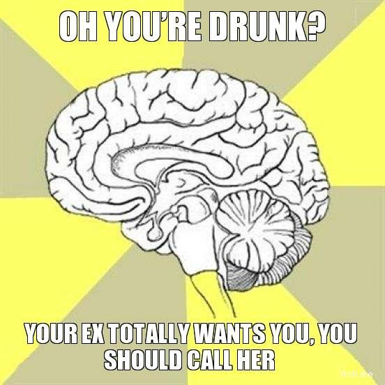 OH YOU'RE DRUNK?, YOUR EX TOTALLY WANTS YOU, YOU SHOULD CALL HER | Traitor Brain | Troll Meme Generator