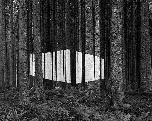 electricgecko / stream of consciousness — Designspiration