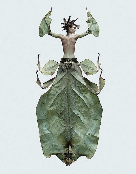 Beautiful pictures of women morphed with insects — Lost At E Minor: For creative people