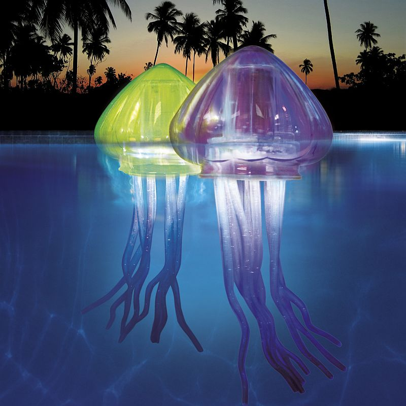 ocean-art-mini-jellies.jpg (JPEG Image, 800x800 pixels)