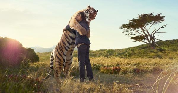 nature,love nature love animals tigers fields hug wild 2842x1500 wallpaper – Fields Wallpapers – Free Desktop Wallpapers