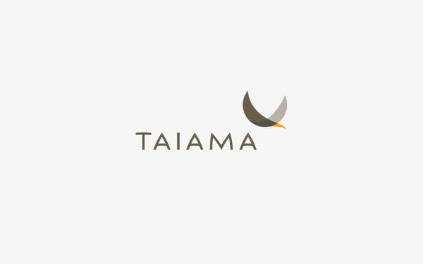 Corporate and brand identity Taiama