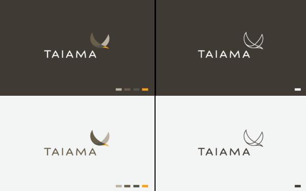 Corporate and brand identity Taiama