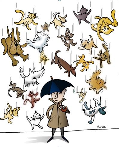 Rain+Cats+%26+Dogs.jpg (398×490)