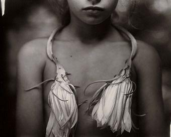 SALLY MANN (B. 1951) | Night Blooming Cereus, 1988 | Photographs Auction</li> | 1980s, Photographs | Christie's
