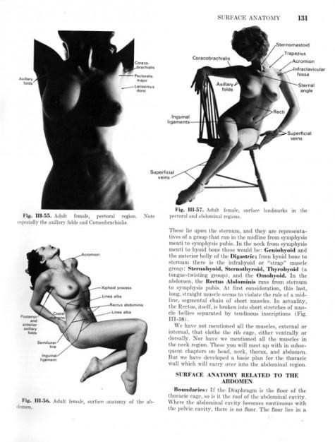 Piccsy :: 1971 anatomy book uses pornographic photos