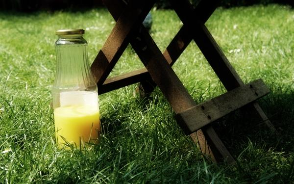 grass,bottles grass bottles summer season 2560x1600 wallpaper – Summer Wallpapers – Free Desktop Wallpapers
