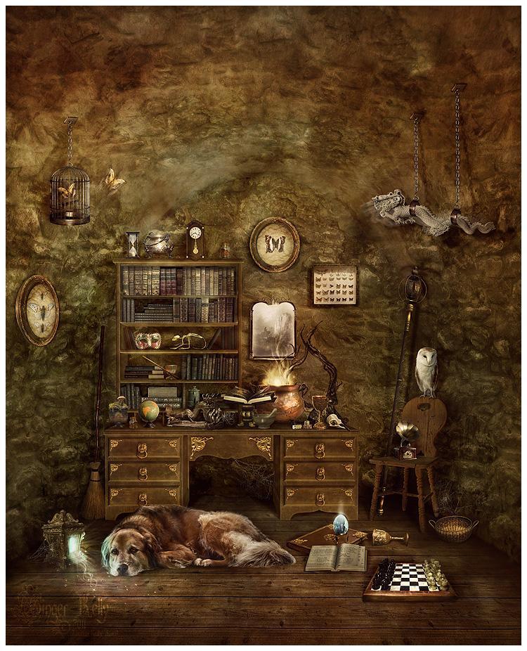 A Wizard's Best Friend by =GingerKellyStudio