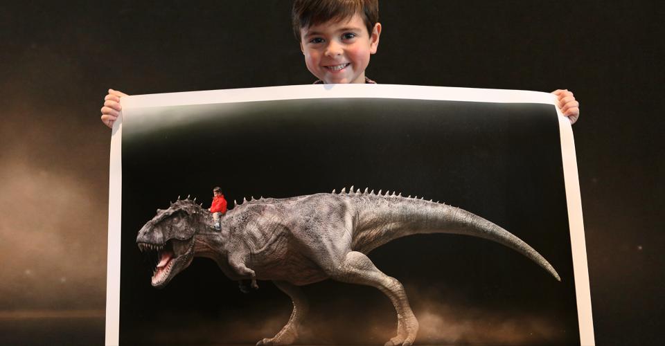Dinoprints Home
