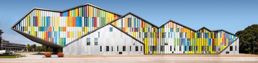 Carlos Arroyo — Academie MWD Dilbeek — Immagine 2 di 10 — Europaconcorsi
