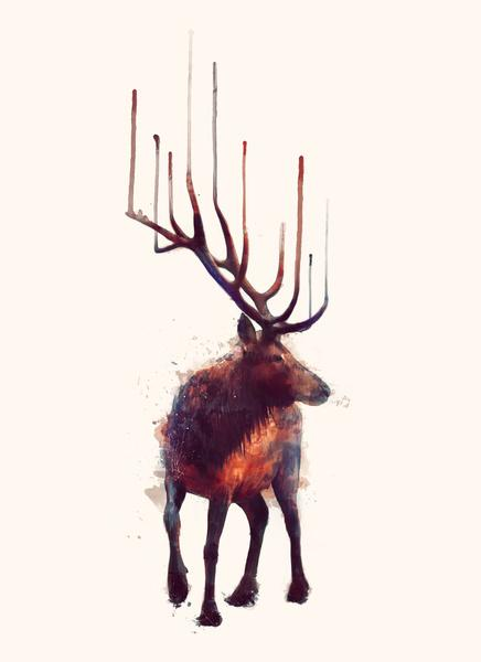 uvec: Elk by Amy Hamilton - Art & Fashion Illustrations