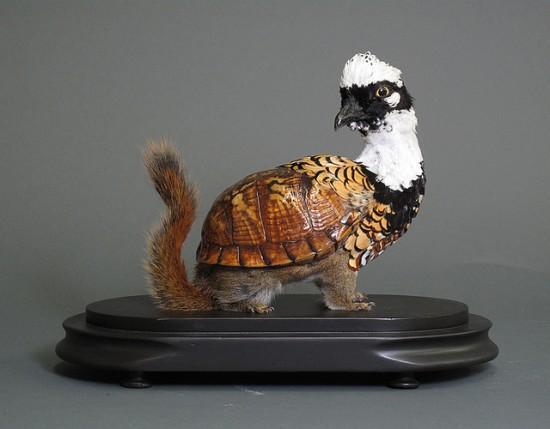 Creepy Taxidermy by Enrique Gomez de Molina | Oddity Central - Collecting Oddities