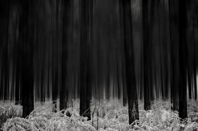 Abstract Photography by Chris Friel