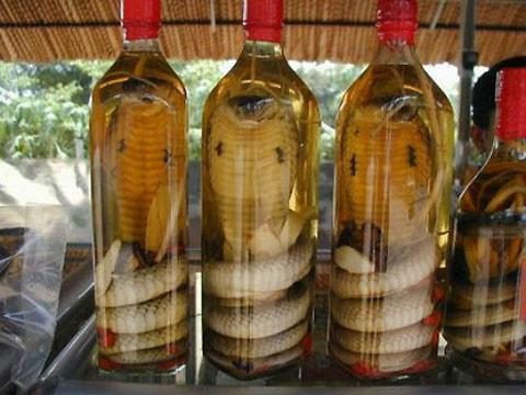 Asian Snake Wine — Lost At E Minor: For creative people