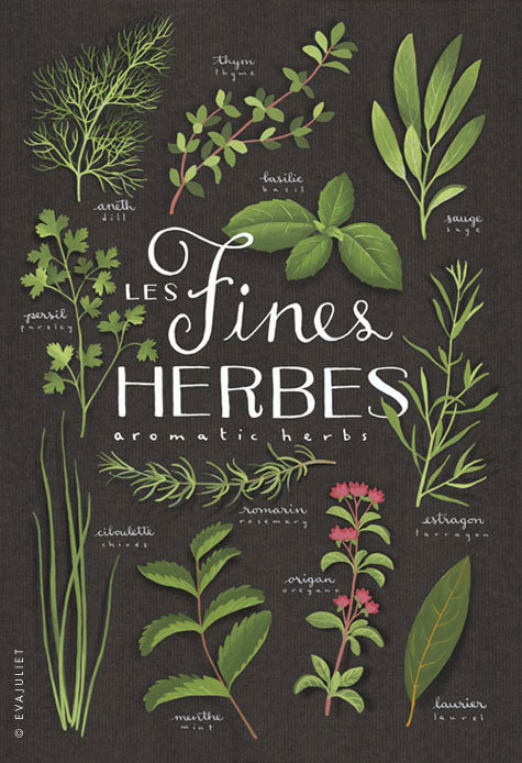 Fines herbes Aromatics Culinary herbs bilingual by evajuliet