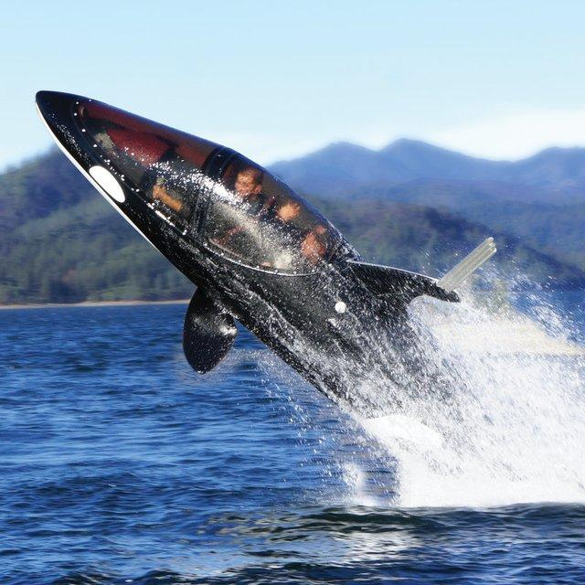 Killer Whale Submarine | Fancy Crave