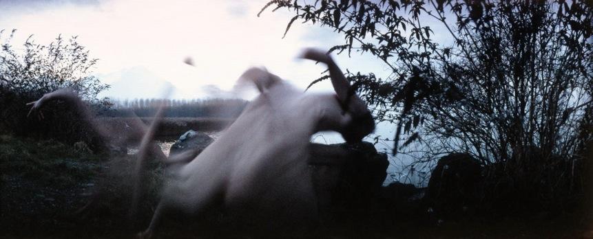 Frederic Fontenoy - Metamorphose - Creativitea