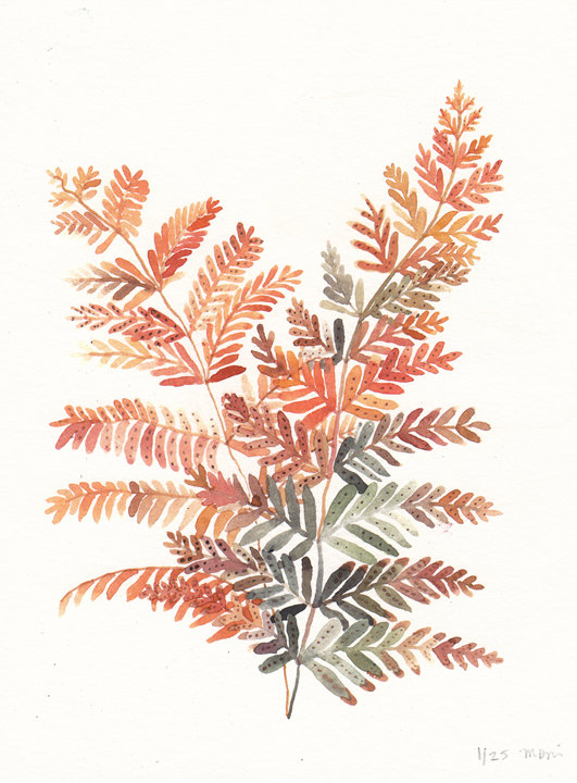 Autumn Fern Limited Edition Print by unitedthread on Etsy
