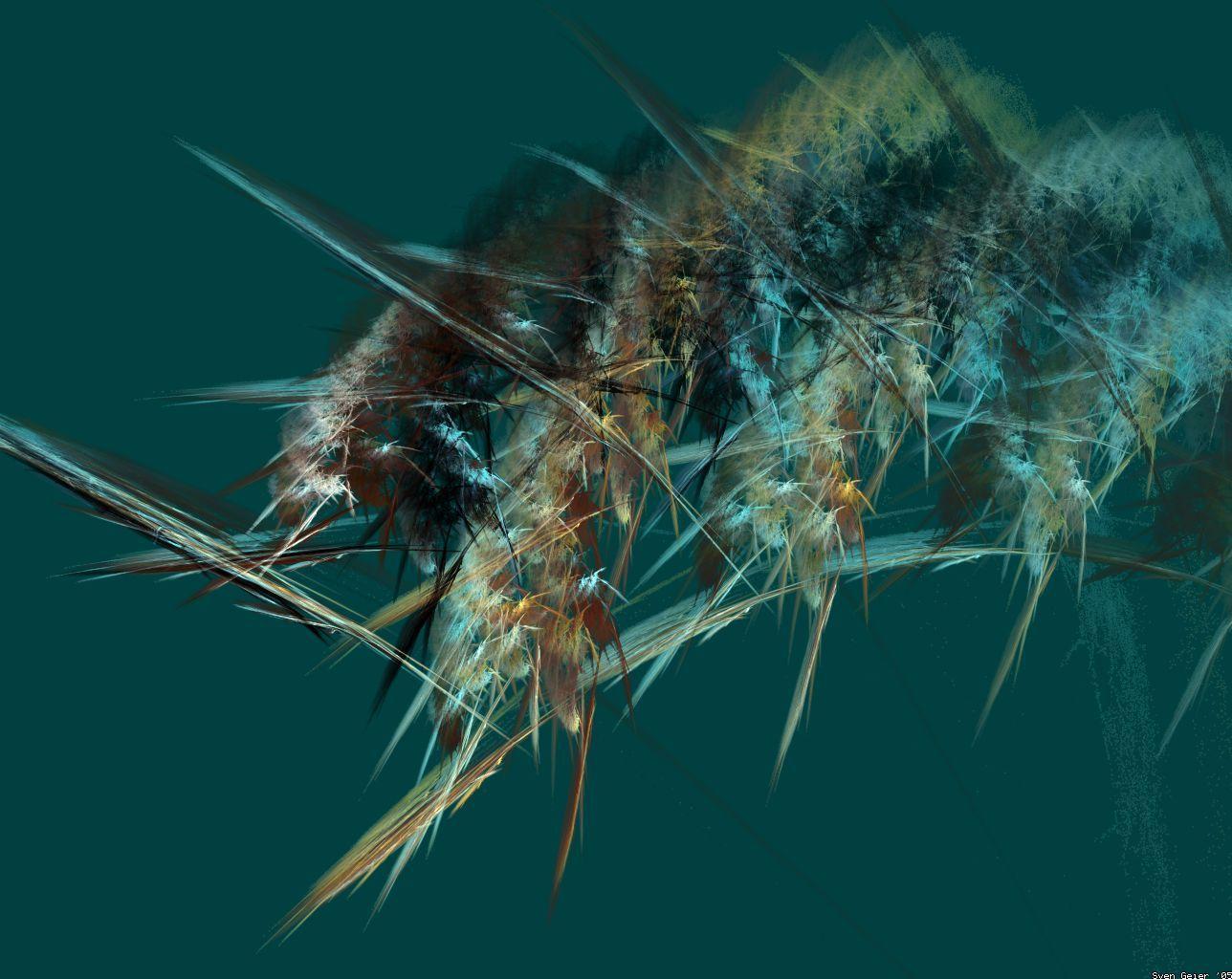Bug.jpg (1288×1024)