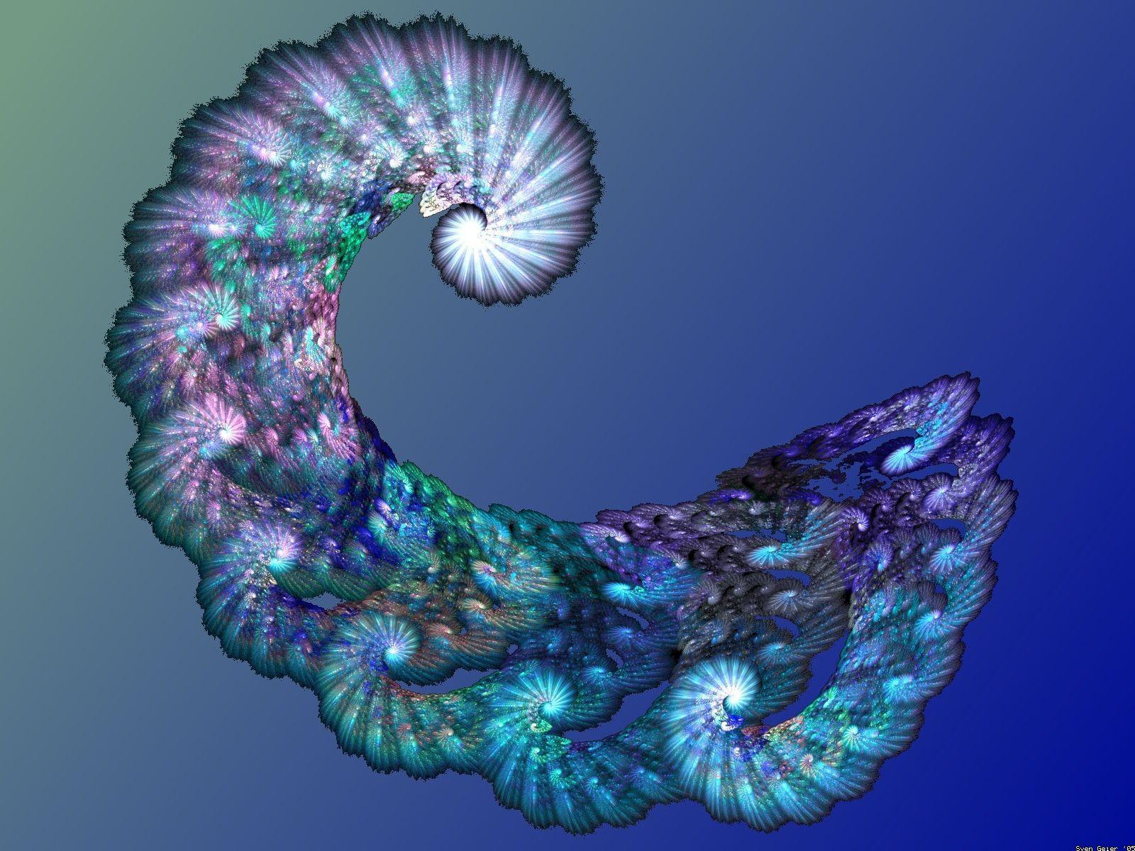 Spiral 2.jpg (1600×1200)