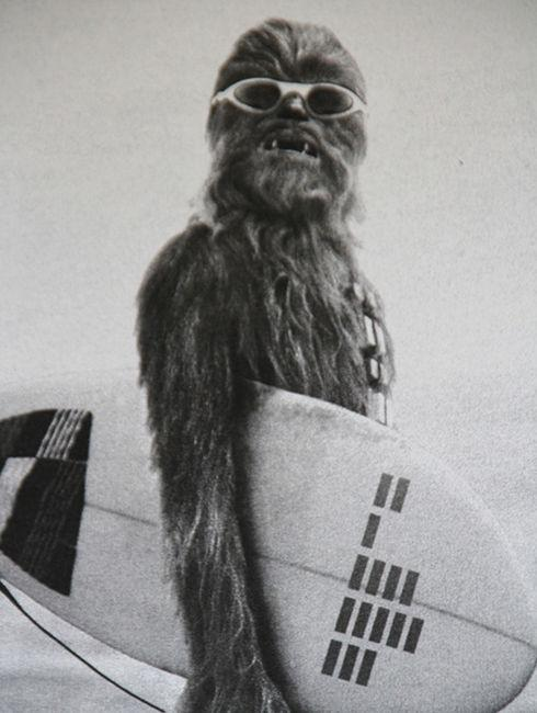 Search results for chewbacca