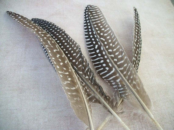 10 Natural Guinea Spotted Feathers long by pocketsaurus on Etsy