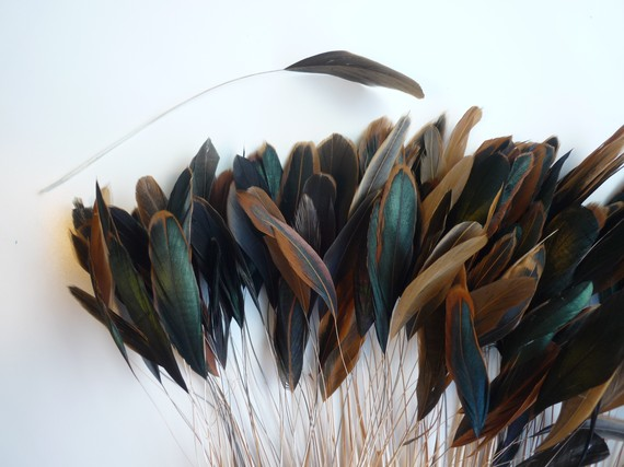 STRIPPED COQUE TAIL/ Bronze Rooster Tail Natural / by KIMONOS