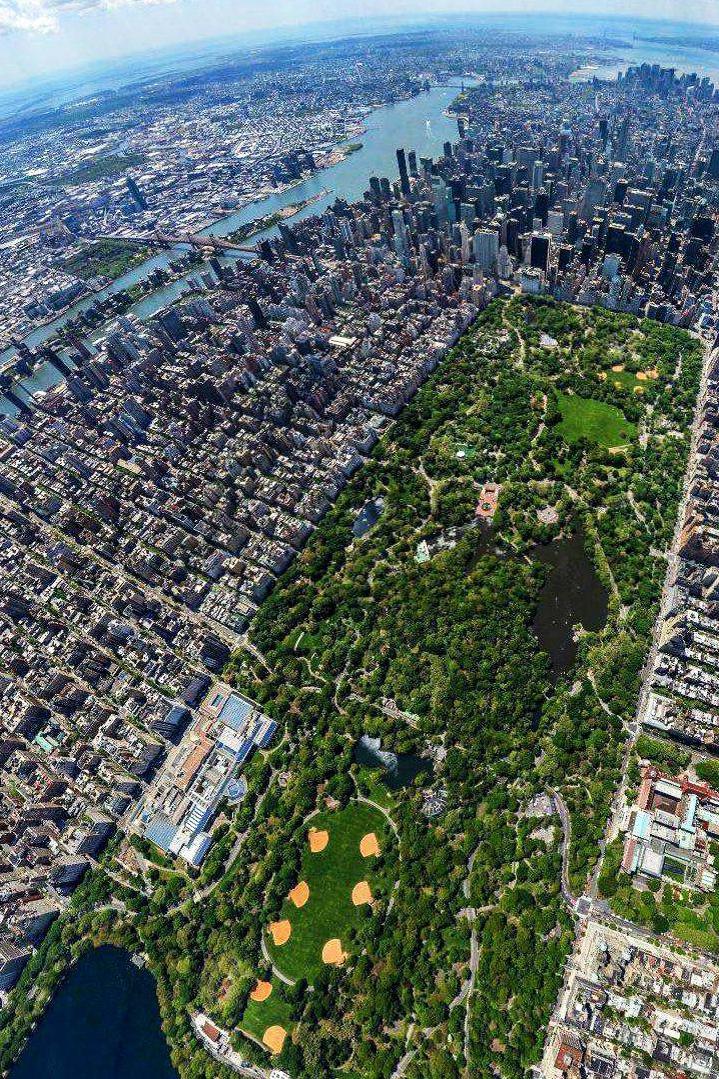 F&O Forgotten Nobility - Manhattan
