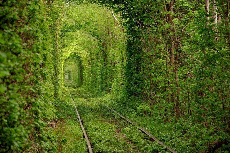 Photo Blogger: The Tunnel Of Love