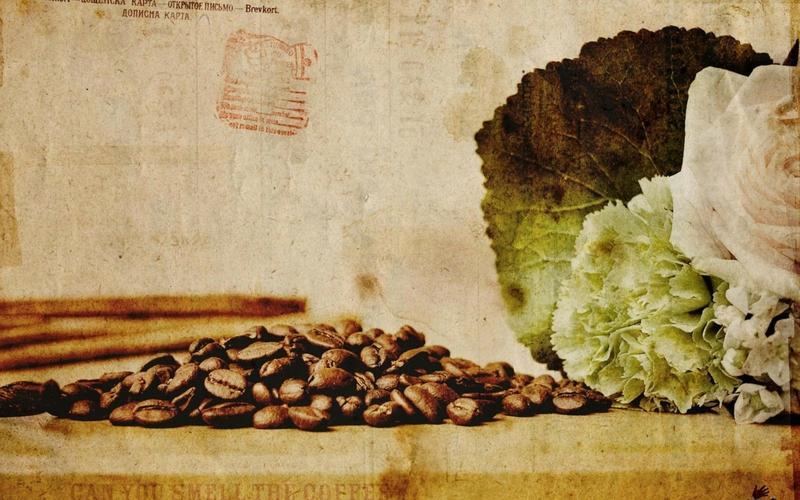 leaves,coffee coffee leaves plants drinks beans raw 2560x1600 wallpaper – leaves,coffee coffee leaves plants drinks beans raw 2560x1600 wallpaper – Drinks Wallpaper – Desktop Wallpaper