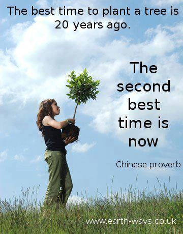 The best time to plant a tree is 20 years ago.