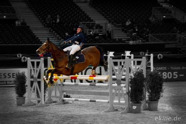 Springreiter Partner Pferd - 2012 - Bilder - joelle.de