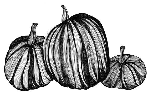 Pumpkins 8x10 Fine Art Archival Print of by virginiakraljevic