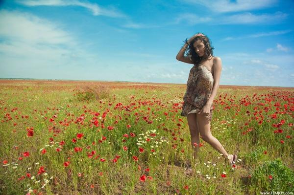 women,brunettes brunettes women fields outdoors ukrainian belinda a poppies 2048x1365 wallpaper – Fields Wallpapers – Free Desktop Wallpapers