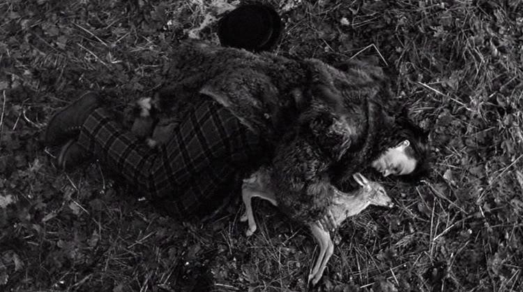 dead-man-deer.jpg (750×418)