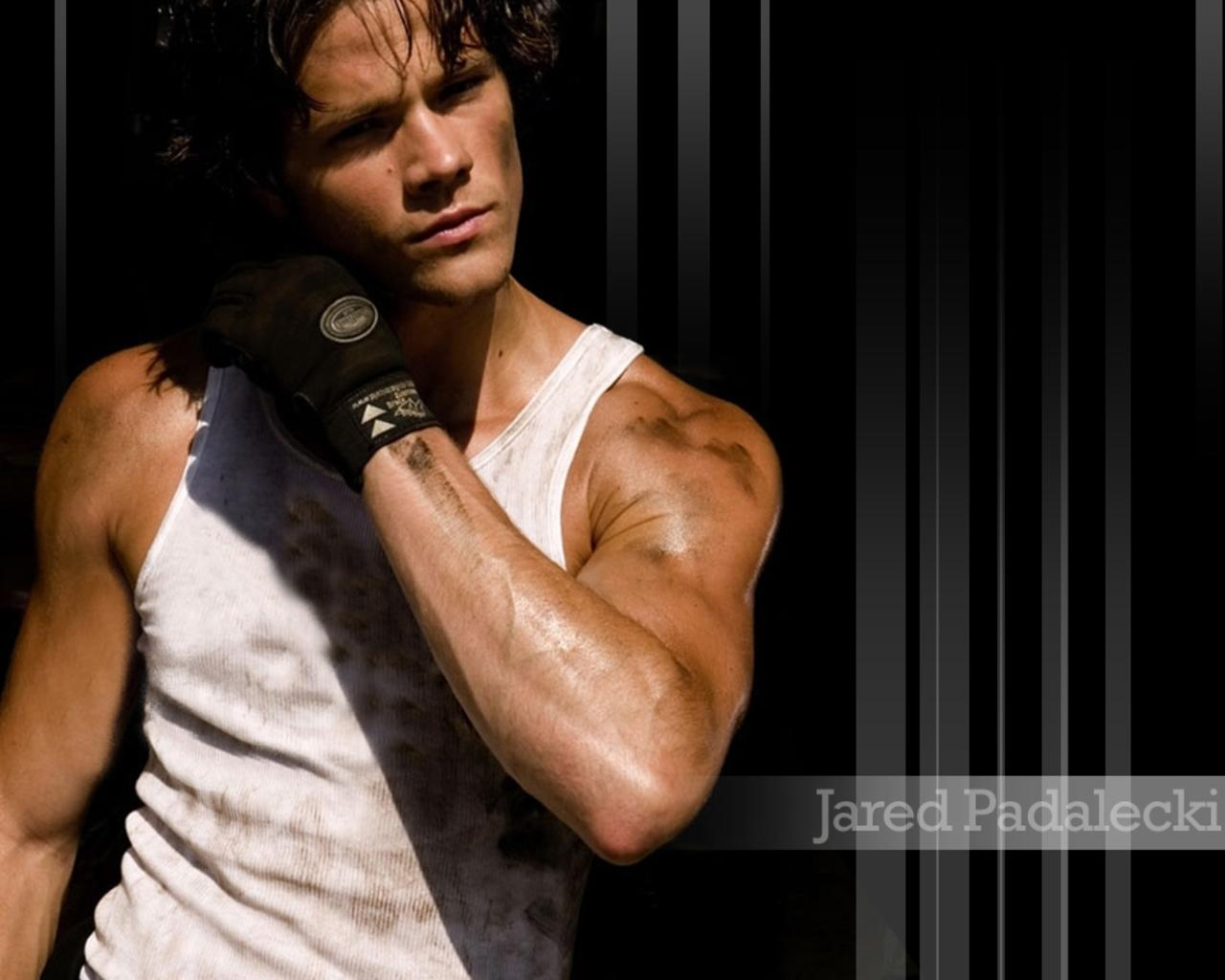 Resultat av Googles bildsökning efter http://images2.fanpop.com/images/photos/6400000/Jared-Padalecki-supernatural-6492906-1280-1024.jpg