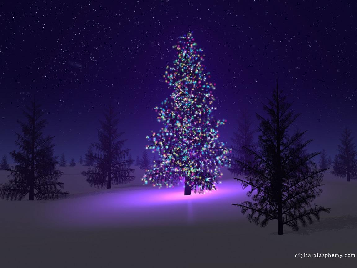 Google rezultati pretraživanja slika za http://chairsundertrees.com/wp-content/uploads/2010/12/christmas-tree.jpg