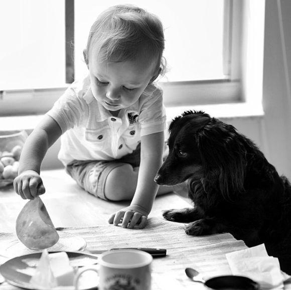 Good Weeks: Children and animals (34 pics)