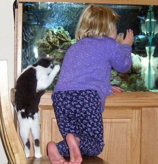 Good Weeks: Children and animals (34 pics)
