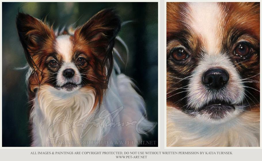 Papillion Pet Portraits - Pastel Pet Portraits by Katja - Papillion idefix