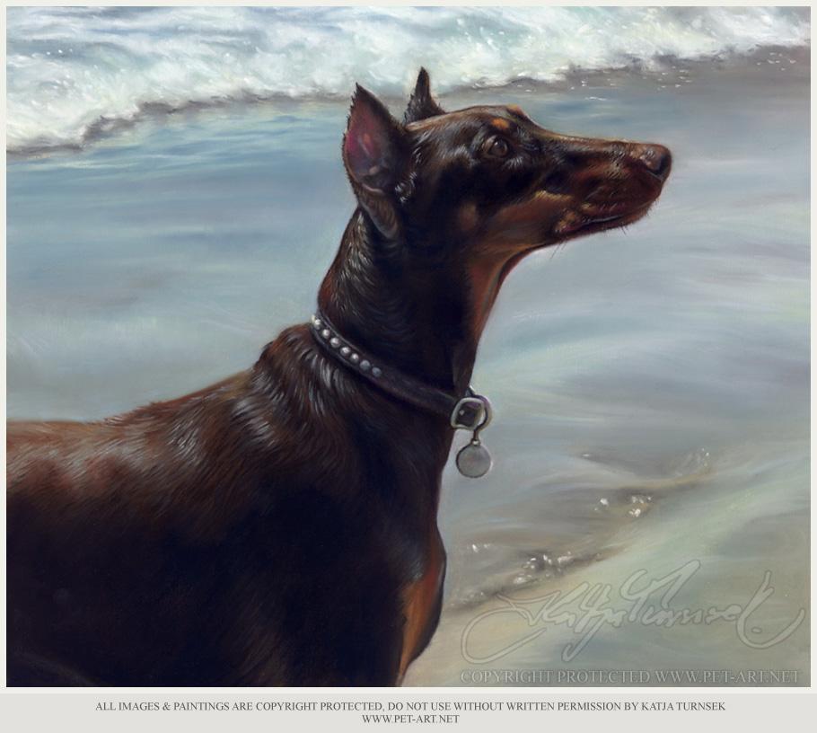 Pet Pastel Portrait - Doberman Pet Portraits in Pastel of Harely
