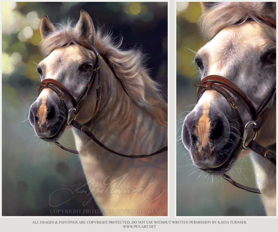 Horse Portrait in Pastel - Horse Magic
