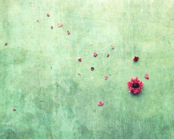 Zen Art Flower petals mint green decor Fine art by LupenGrainne
