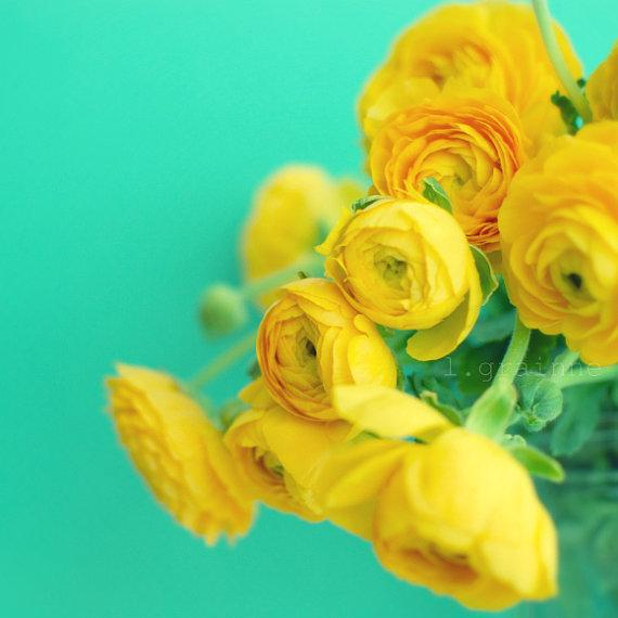 Flower photography turquoise nursery art yellow by LupenGrainne