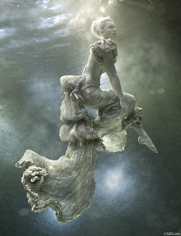 © Zena Holloway – Underwater Photographer & Director » LOLEG.com