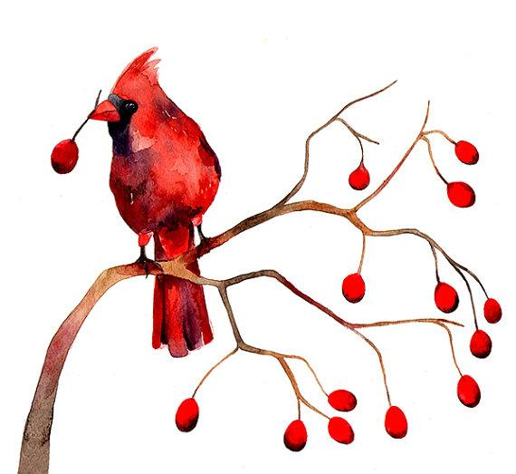 Cardinal Winter Berries Christmas by BarbaraSzepesiSzucs on Etsy