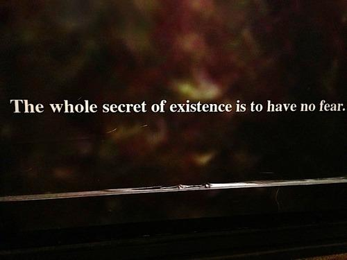 The whole secret of existence is to have no fear.